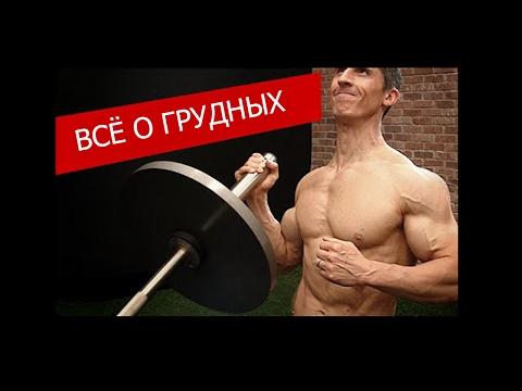 Научный подход в тренировке грудных мышц