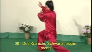 Tai Chi — Schattenboxen / Shadowboxing Peking-Form 苏韧峰:二十四式太极拳 TAIJIQUAN