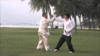 孙氏太极拳应用法 Sūn Style Taiji Quan Applications