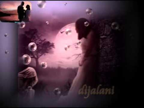 Aku Cinta Kau Dan Dia - Ahmad Dhani ~ Lirik~ video