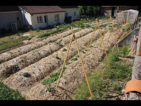 permaterre potager en permaculture 3 mai 2014 youtube. Black Bedroom Furniture Sets. Home Design Ideas