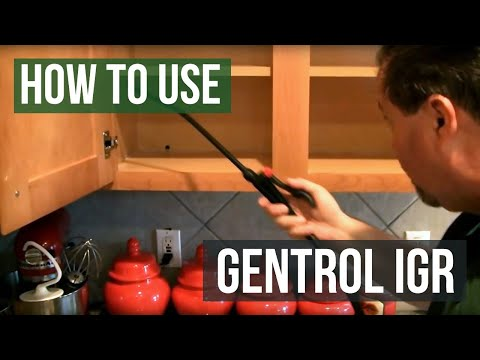 How to use Gentrol IGR Insecticide Growth Regulator