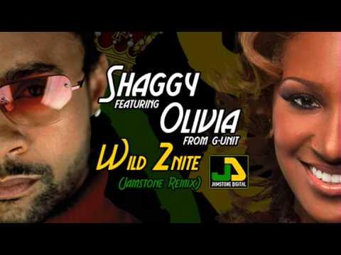 Shaggy feat. Olivia - Wild 2nite (Jamstone Remix)