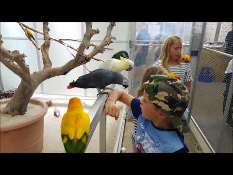 Die Zoo Zajec Bilder Diashow - Tolle Tiere im Bild