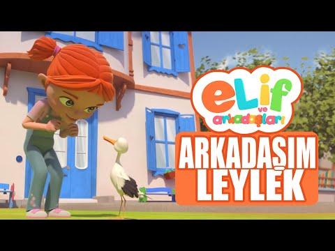 Elif ve Arkadaşları  - Arkadaşım Leylek - TRT Çocuk Çizgi Film