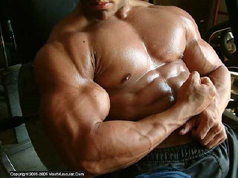 Bodybuilding photos - May 2009 - Part 1 Video