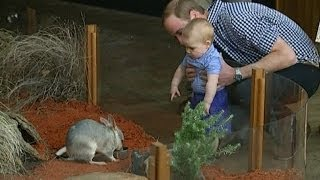 Prince George goes to the Zoo with Kate and Wills in Australia