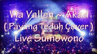 download lagu Via Vallen  ~ Akad  Payung Teduh Cover gratis