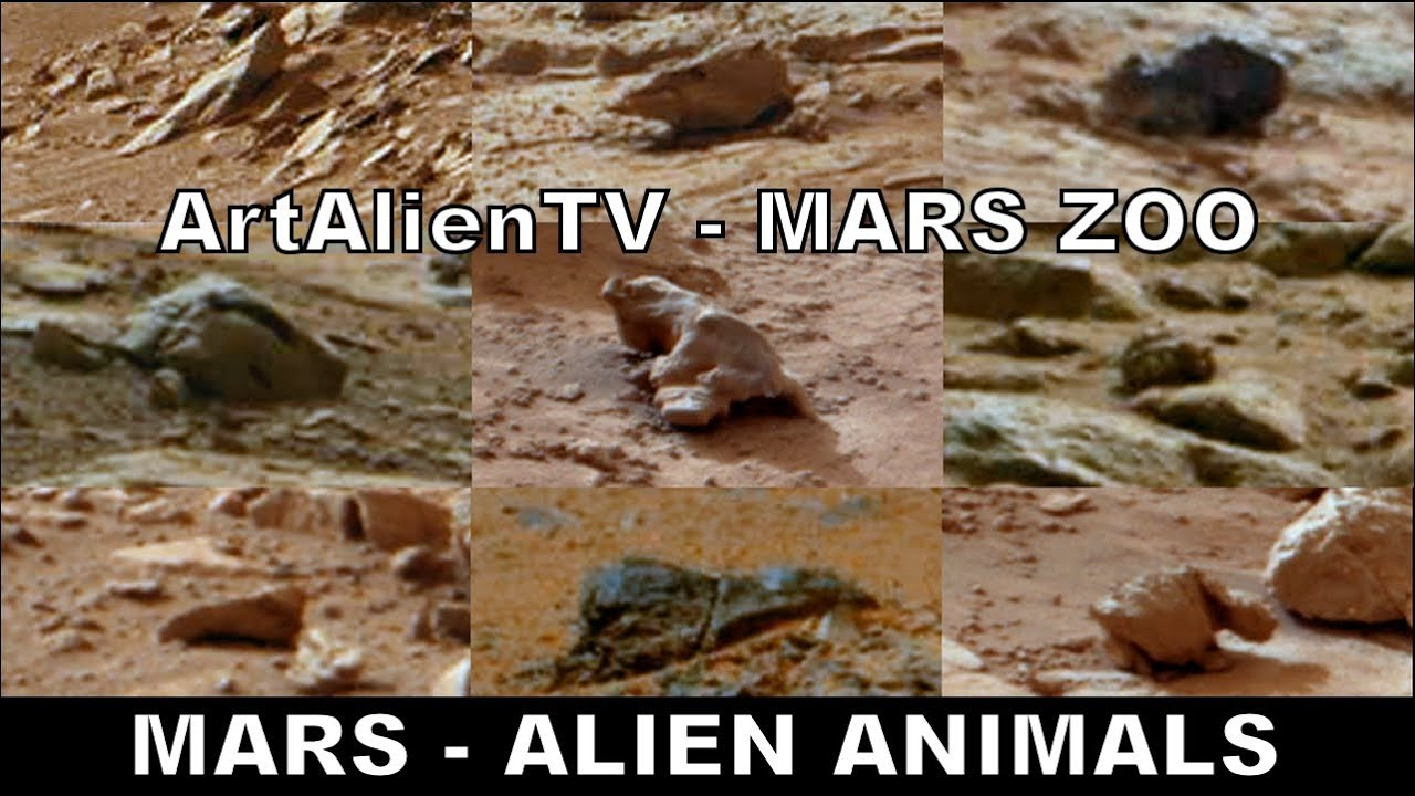 alien animals pictures on mars