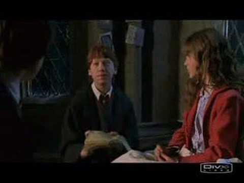 Hermione and Ron - Everytime we touch