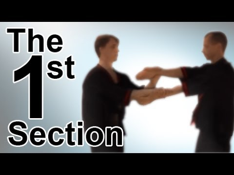 Wing Tsun 1st Chi Sau Section Image 1