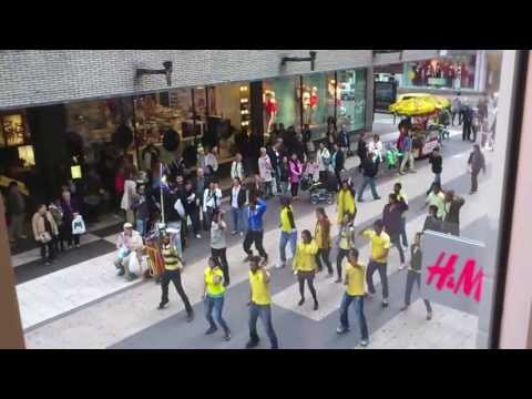 Chennai Super Kings (csk) Flash Mob song Stockholm, Sweden 2013 Ipl video