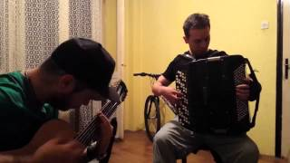 Video Chop Suey - Accordion Cover (With