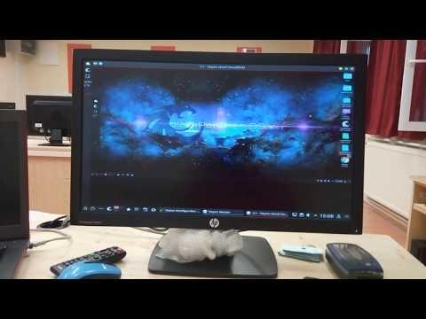 Informatika tanterem kialakítása blackPanther OS és Windows együttes használatával.