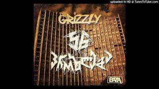 Grizzly - Labirinti