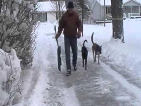 Winter in Ohio, don't you Love it?