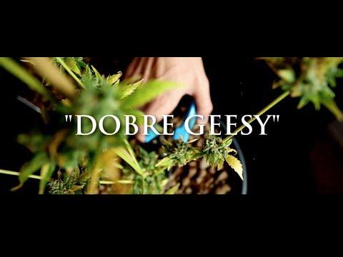 Ganja Mafia - Dobre Geesy Prod. Psr video