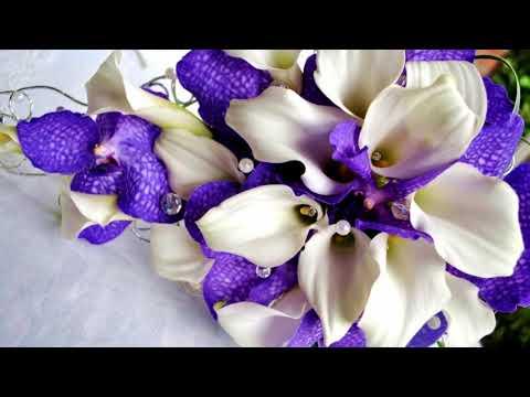 Beautiful purple flowers (HD1080p)