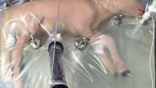 Researchers Create Artificial Womb