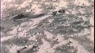southeast missouri artifact hunting
