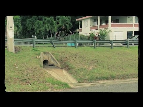 Gullwing Truck Co. | Alexis Rivera (Full Part)