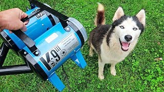 """K-9 III"" Best Husky Coat Deshedder! - Husky Coat Blow Out"