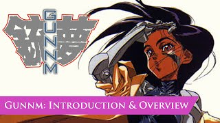Gunnm (aka Battle Angel Alita): Comic Overview
