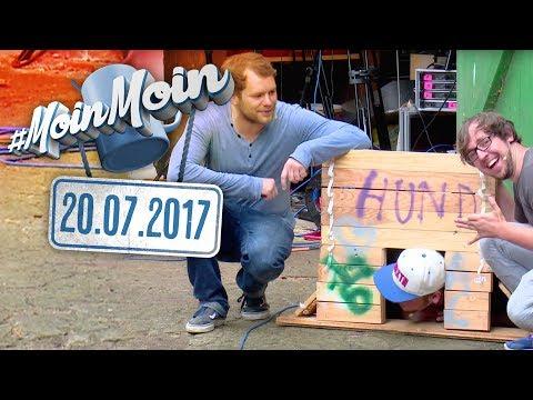 Do it yourself! - Im Kliemannsland eine Hundehütte bauen  MoinMoin mit Gunnar. Andreas & Flo