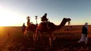 مهرجان الجزيرة -The Sahara of Morocco- صحراء المغرب