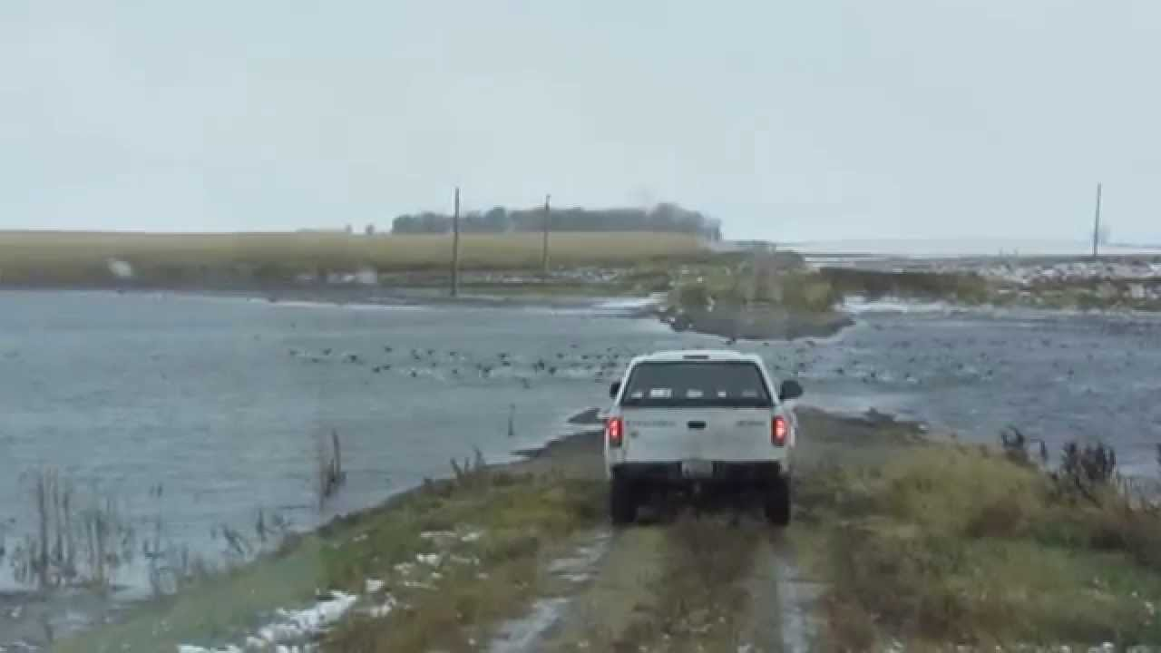 Duck hunting north dakota october 2012 youtube for North dakota fishing license
