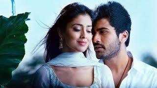 Nuvva Nena - Nuvva Nena movie Songs - Neeli Neeli Kannule - Allari Naresh Sriya Sarvanand