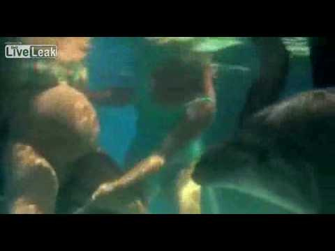 LiveLeak com Woman giving birth under water Video