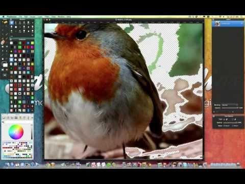Pixelmator Tut: Remove Background Techniques