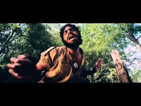 Patli Kamar Chikna Badan ( Jungle).avi