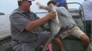 Catfish Jugging on Mississippi