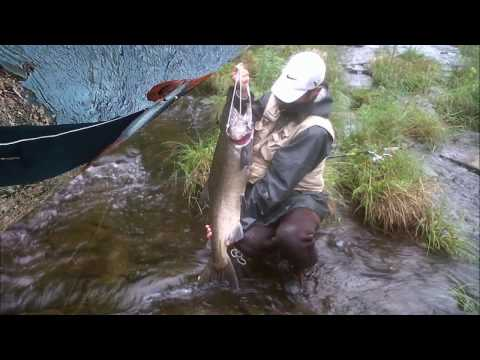 Salmon River Pulaski New York Salmon and Steelhead Fishing - RR