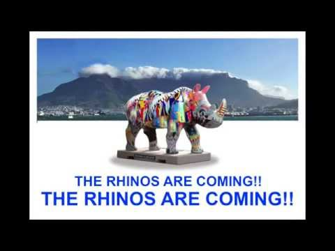 The Rhinos Are Coming To Cape Town