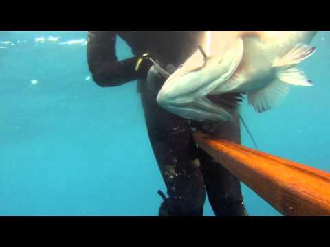 Spear fishing classes with Jorge Mario #3