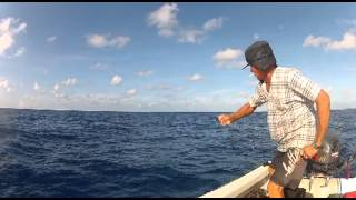 Shark Fishing Seychelles