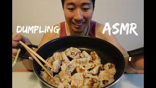 ASMR PAN FRIED DUMPLING GYOZA MUKBANG EATING SOUNDS (NO TALKING)