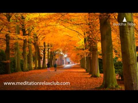 Thanksgiving - Thanksgiving Dinner Music, Thanksgiving Day Background Music