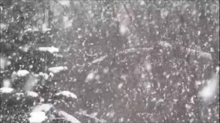 Michael Buble Video - Michael Buble - Let It Snow