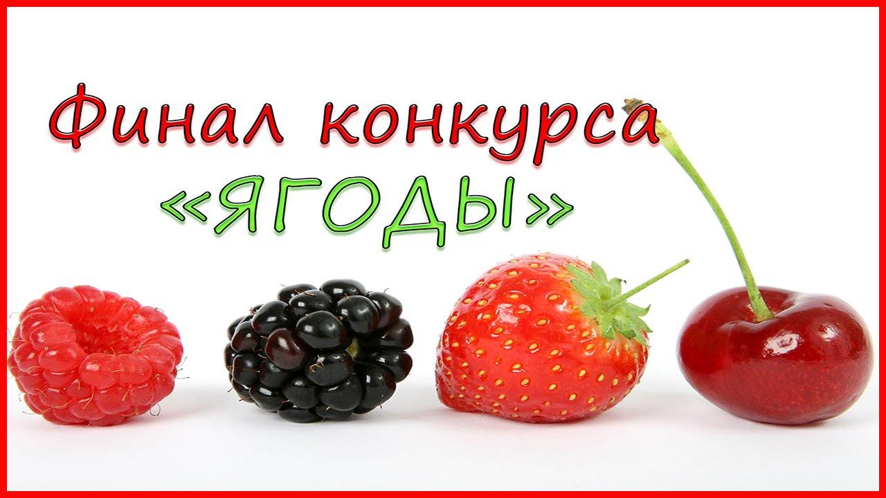 Конкурс с ягодами
