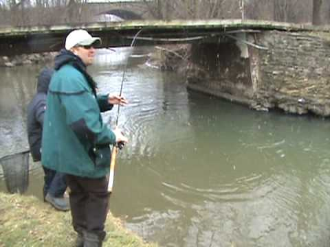 Spring Steelhead Fishing