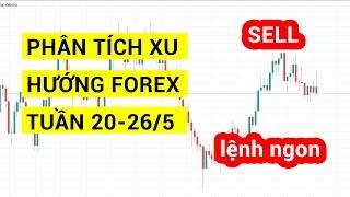 Phân tích xu hướng forex cho trader bằng phân tích kỹ thuật tuần 20-26/5