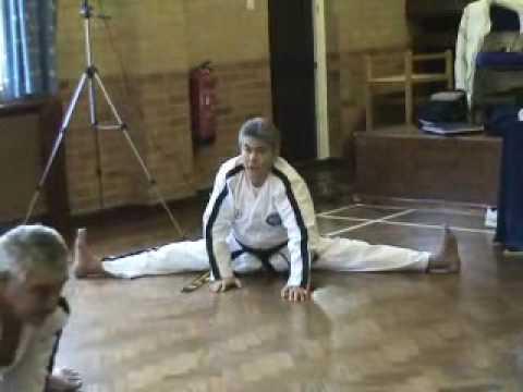 Мастер Раймонд Чой-8 дан ИТФ- stretch.wmv
