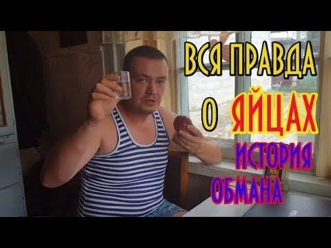 Вся правда о ЯЙЦАХ! История обмана!