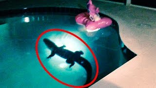 Top 15 Mysterious Things Found in People