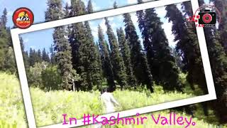 Awesome life memories from some past days. #SSS #iWasThere #Kashmir #ExploreTheKashmir
