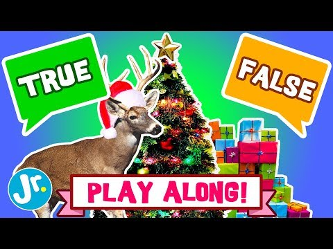 Play Along Game - CHRISTMAS - TRUE Or FALSE (INTERACTIVE GAME!)